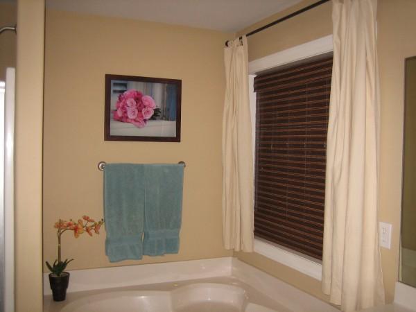 Master Bathroom: Before
