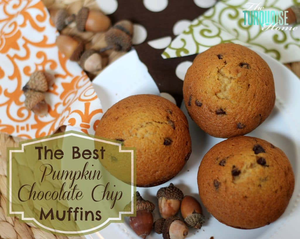 the-best-pumpkin-chocolate-chip-muffins-2