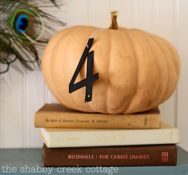11 Ways to add Fall to your Home | Fall Decor from The Shabby Creek Cottage