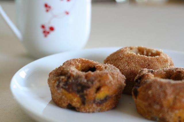 http://theruffledstitch.blogspot.com/2013/09/pumpkin-chocolate-chip-and-cinnamon.html