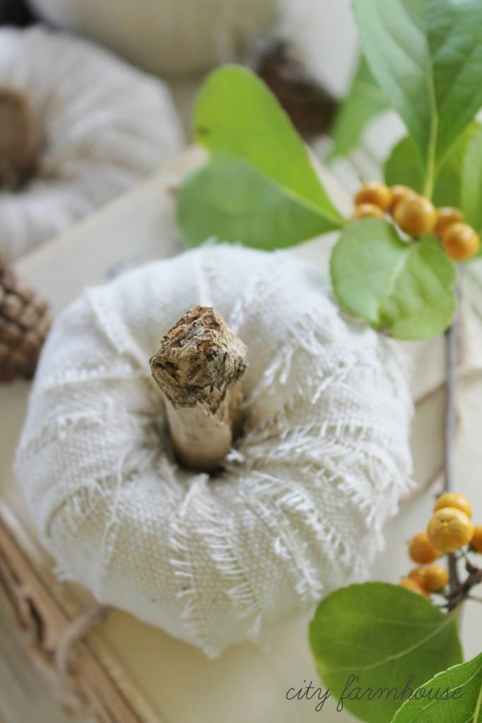 DIY-Dropcloth-Driftwood-Petite-White-Pumpkins-Easy-Project-for-Fall-682x1024