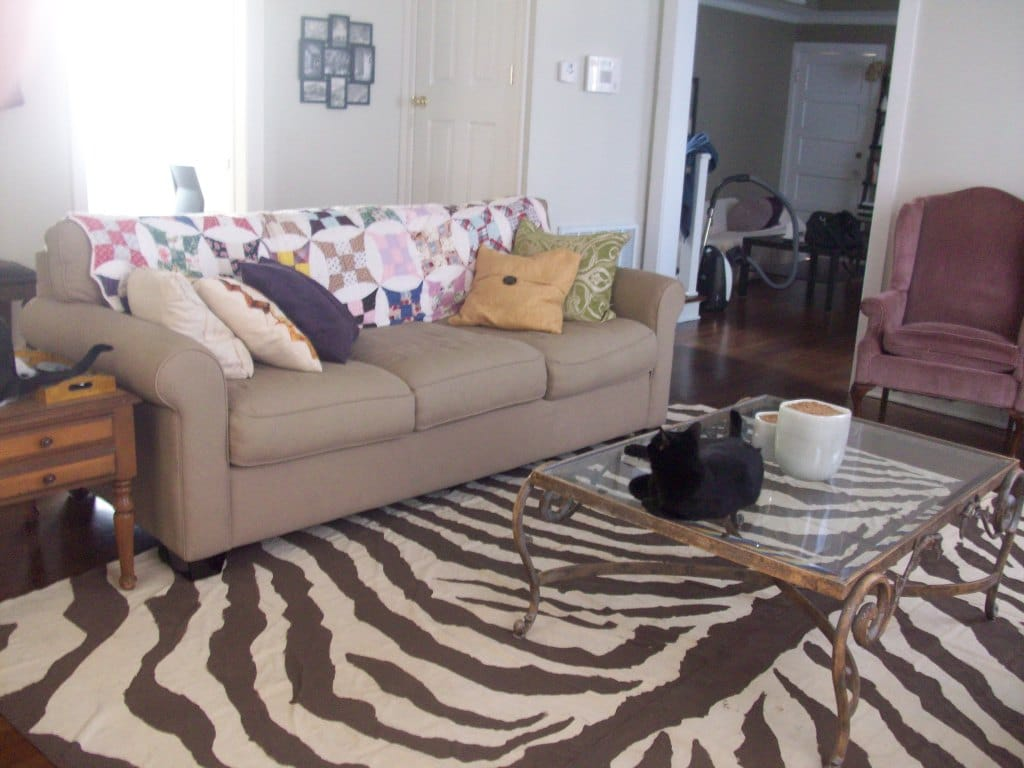 Painted Zebra Drop Cloth Rug