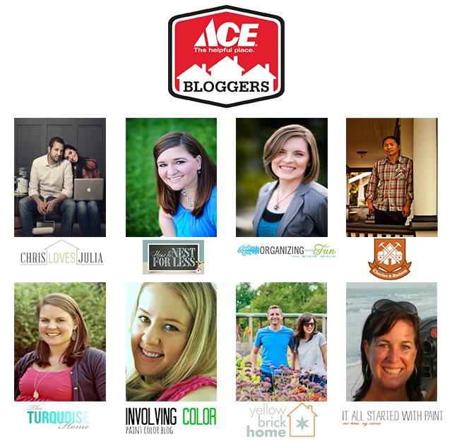 Ace Blogger Panel