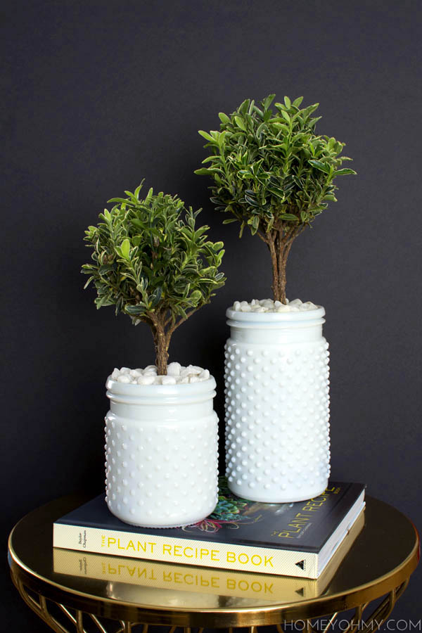 Topiaries-Inspired-by-The-Plant-Recipe-Book