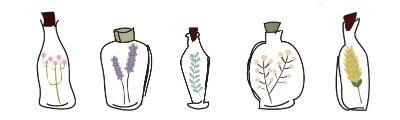 bottles-flowers-small