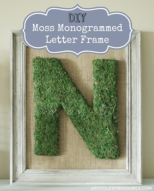 DIY Moss Monogrammed Letter Frame