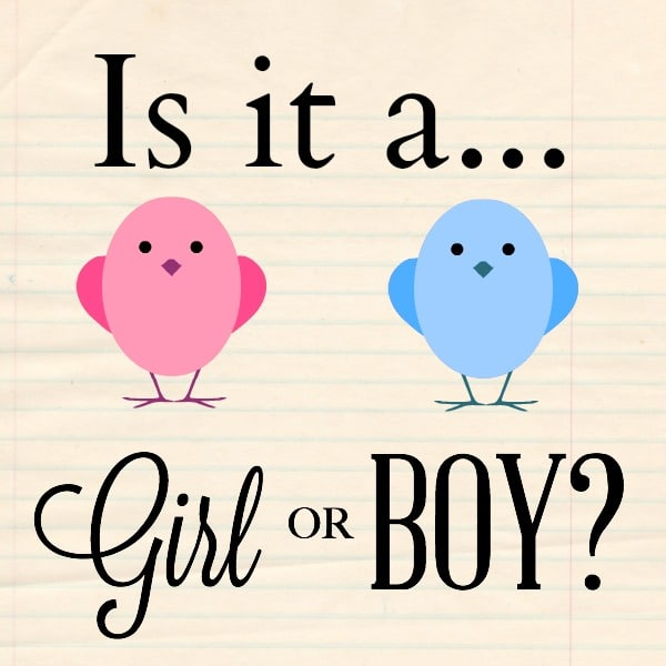 Is it a girl or boy?