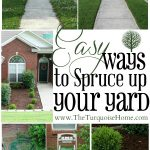 Easy Ways to Spruce up your Yard