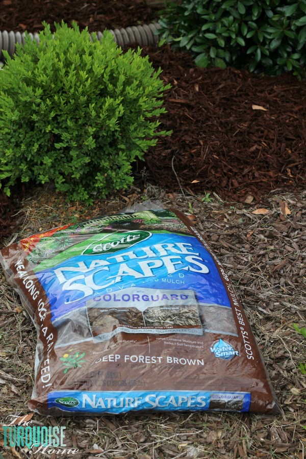 Mulch the front Flower Beds