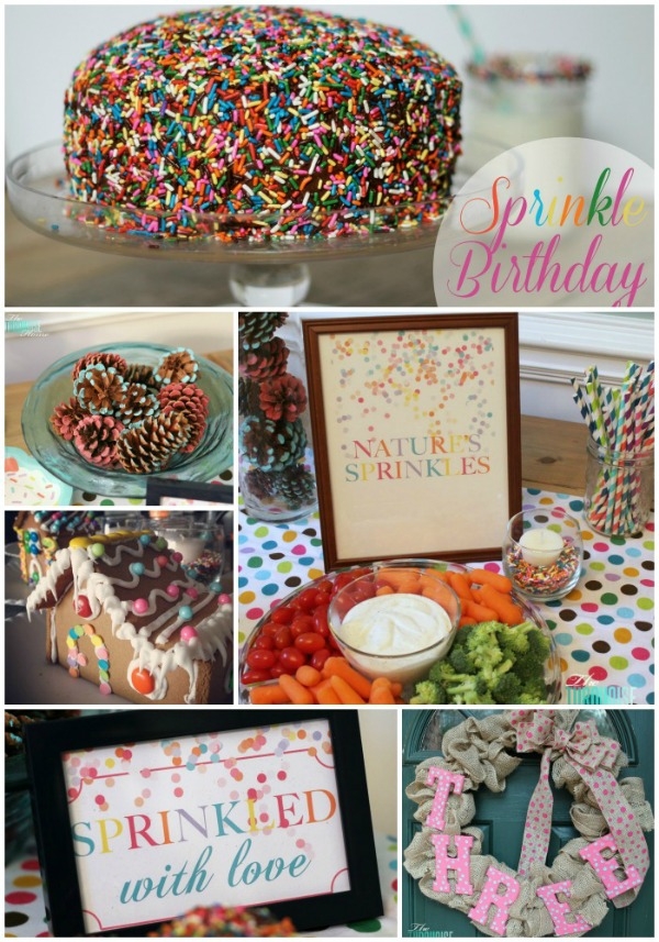Sprinkle Birthday Party Details | TheTurquoiseHome.com