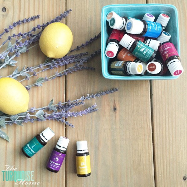 Lemon, Peppermint and Lavender are wonderful for seasonal sniffles and congestion! | TheTurquoiseHome.com