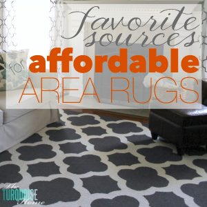 A good area rug makes or breaks a room. Size, quality and style all play a big part! But some of them can be pricy!! Find out these favorite sources for affordable area rugs via TheTurquoiseHome.com