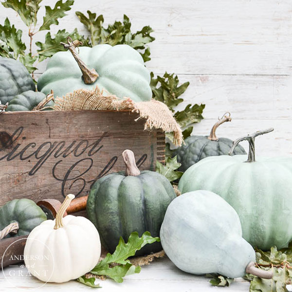 Display of Neutral Pumpkins