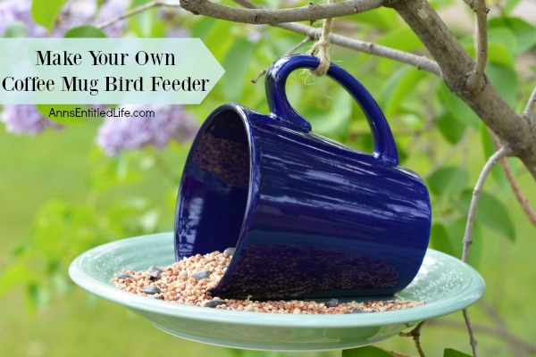 coffee-mug-bird-feeder-horizontal-01