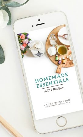 Homemade Essentials FREE Mini Ebook