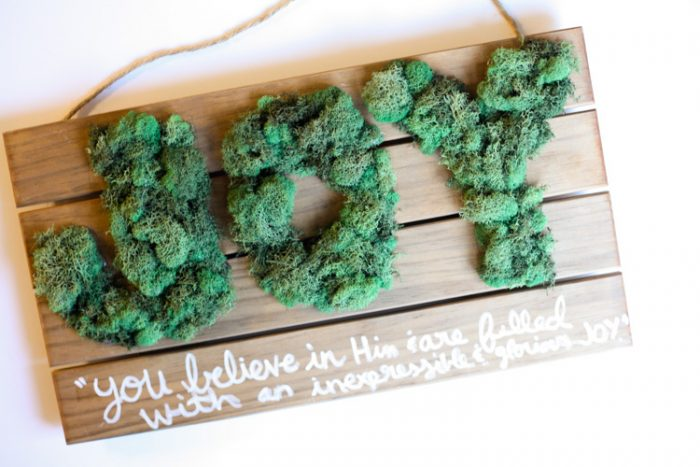 joy-sign-with-moss