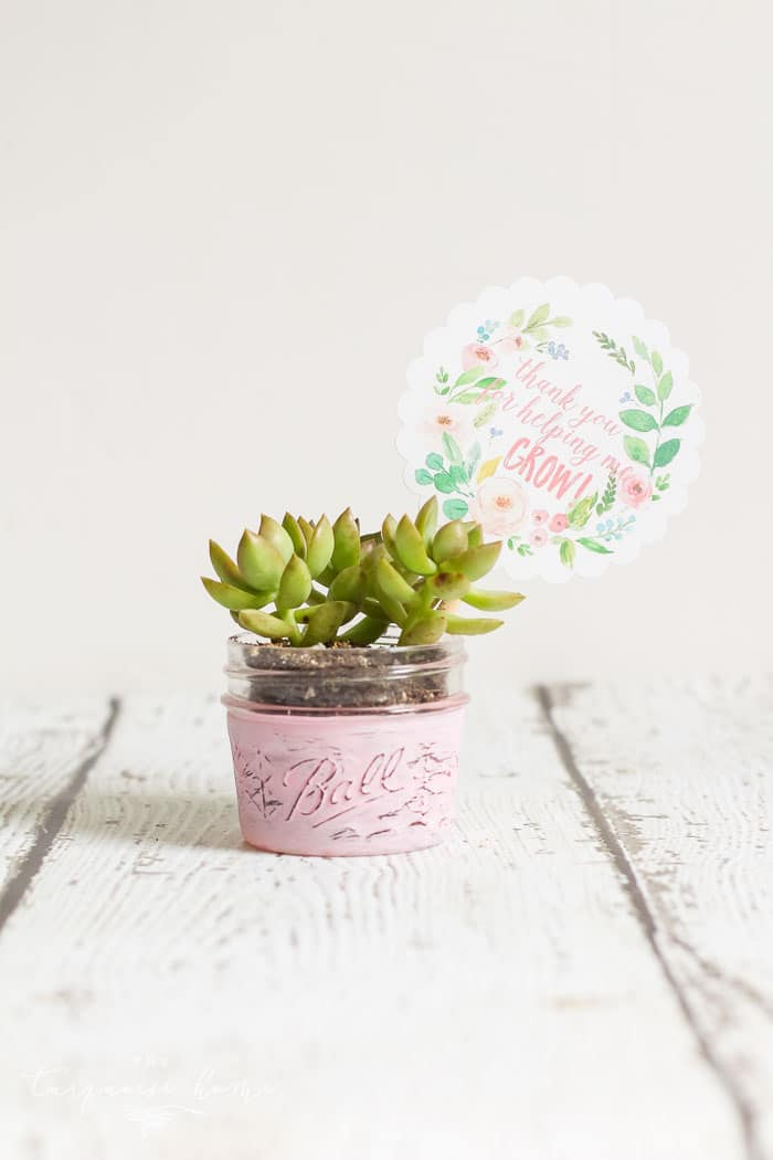 Easy DIY Planter Teacher Gift Ideas + Free Printable Tag