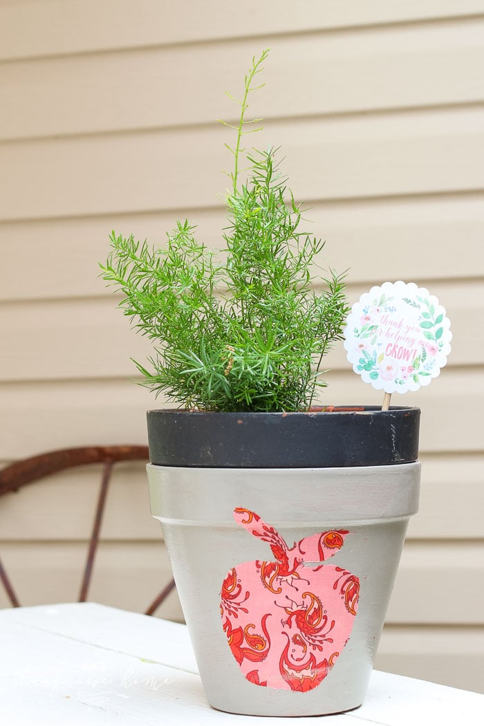 Love this! So simple and easy!! This DIY planter with a silhouette apple is just one of the teacher gift ideas for Teacher Appreciation and Mother's Day with free printable.