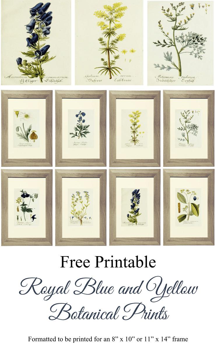 Gorgeous Botanical Prints Free Printables The Turquoise Home