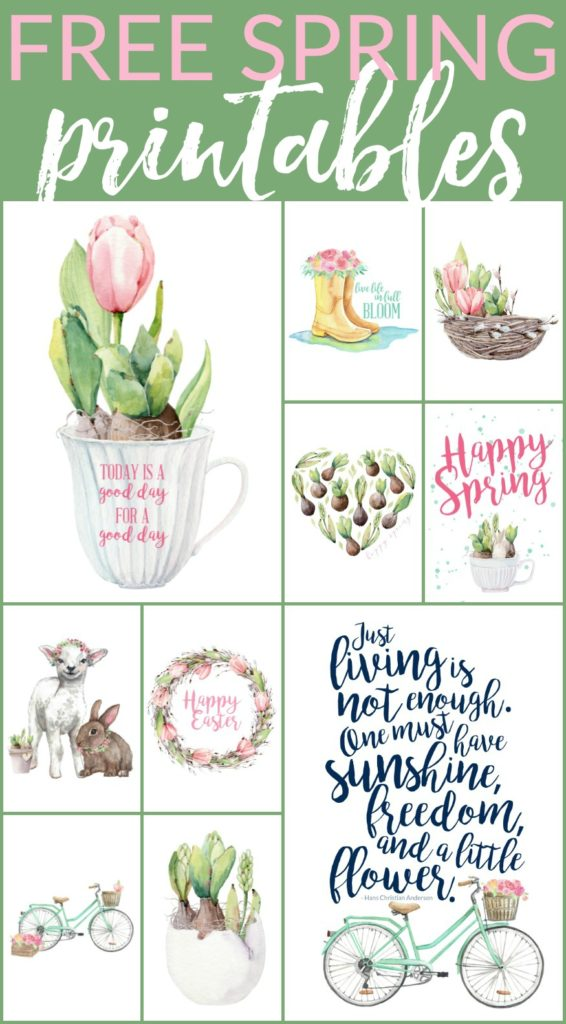 image relating to Spring Printable referred to as 10 Floral Spring Free of charge Printables (and much more!) The Turquoise
