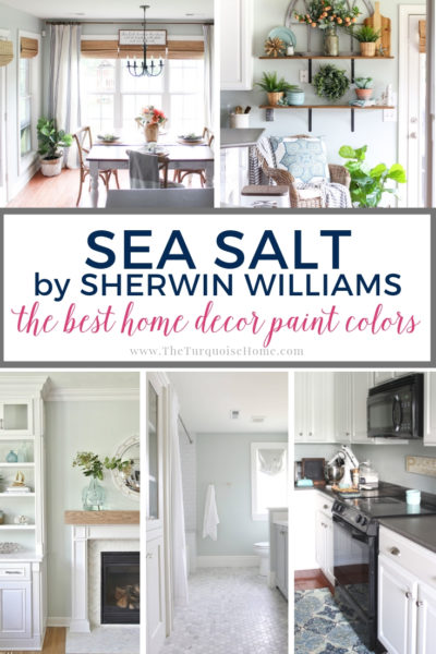 Sea Salt by Sherwin Williams is a gorgeous green/gray/blue color perfect for a master bathroom!