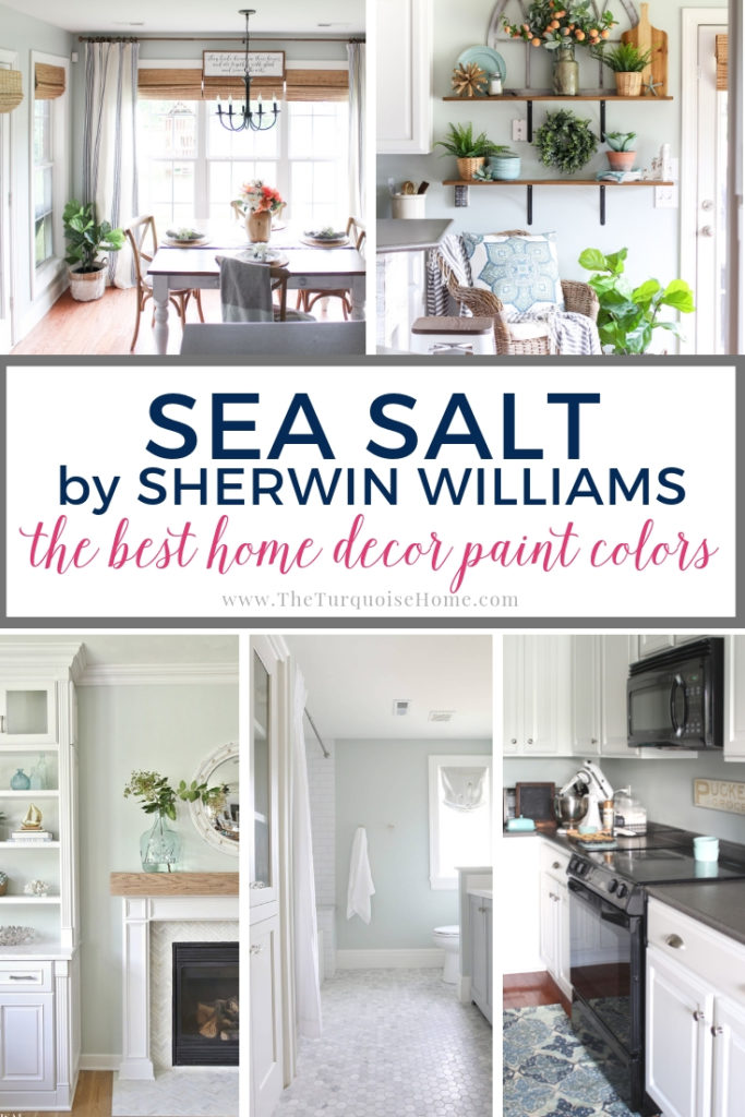 One of the most popular paint colors out there is Sea Salt by Sherwin Williams. It's a versatile blue/green/gray color, perfect for bathrooms, bedrooms and kitchens! #seasalt #paintcolors #homedecorideas #homedecordiy #diyhomedecor #paint