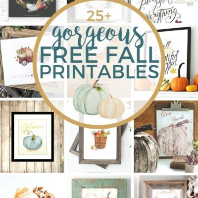 25+ Gorgeous Free Fall Printables