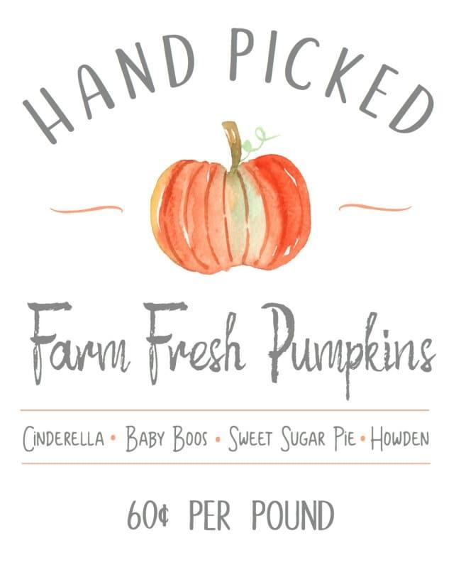 Farm Fresh Pumpkins | 25+ Free Fall Printables