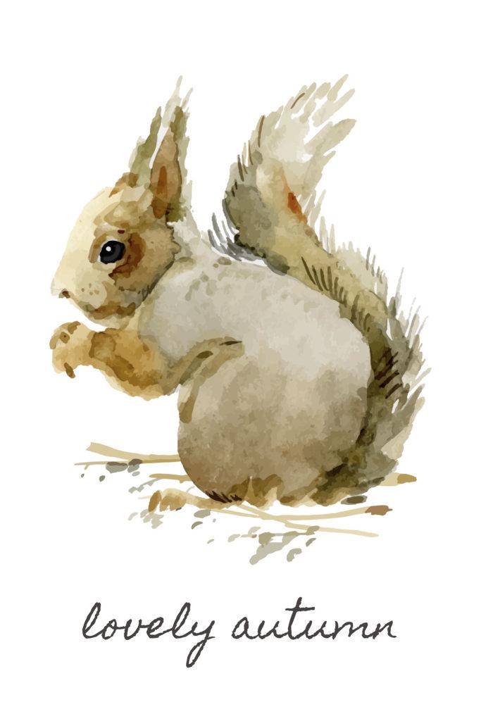 Squirrel Printable | 25+ Free Fall Printables