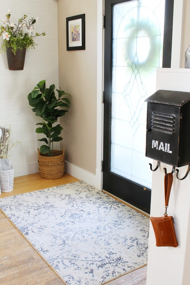 entryway with a potted plant in the corner and an area rug in front of the door