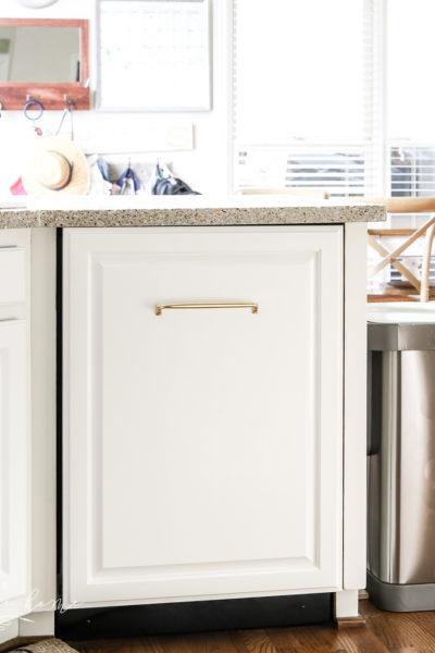 Custom cabinet door panel for a dishwasher