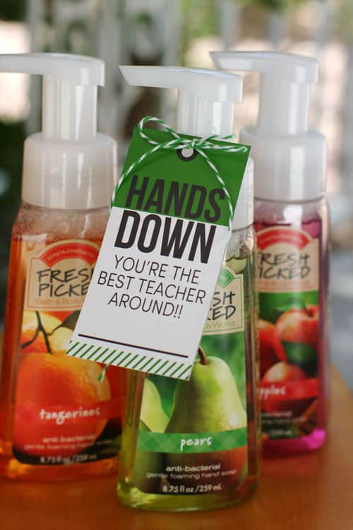 Anti-bacterial hand soap with personalized gift tag makes a great teacher appreciation gift.