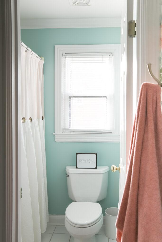 Girls' Bathroom in Behr's Baby Aqua, Satin Finish