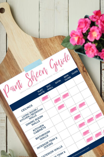 Paint Sheen Guide - free download