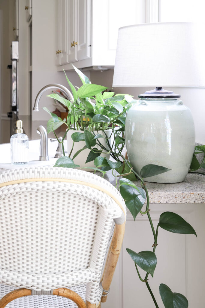 Marble Pothos In the Kitchen